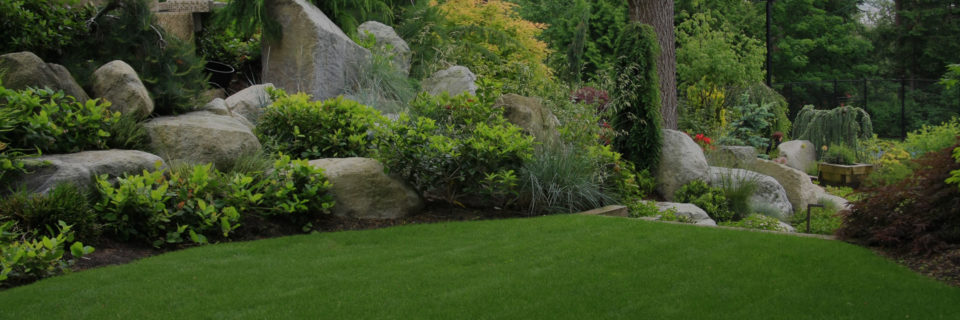 Quality Landscape Design Services