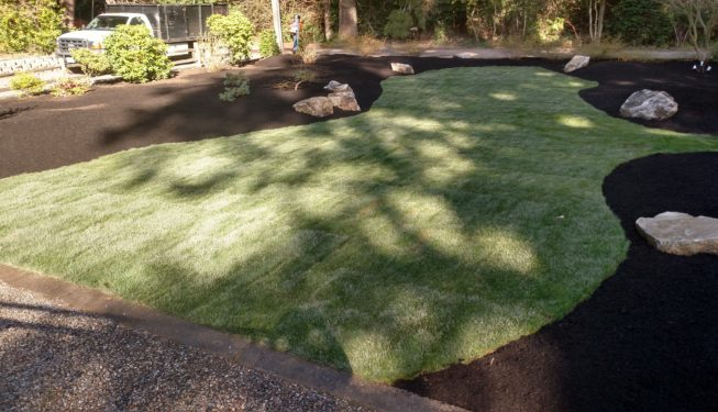 West Bremerton Lawn Installation