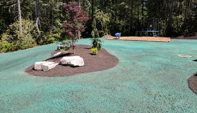 Chico Landscape Installation