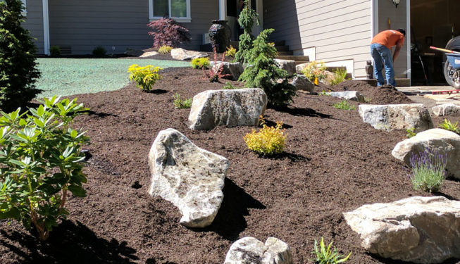 Chico Landscape Bed Installation